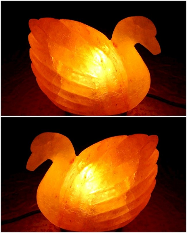 Eye-catching Duck Shaped Salt Lamp