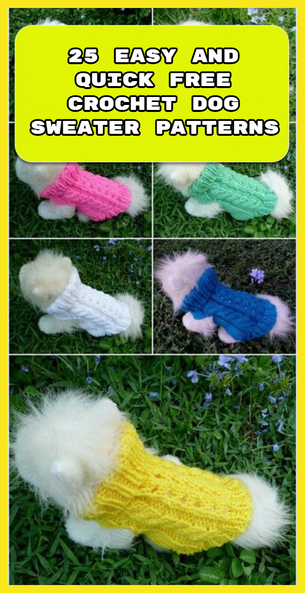 25 Easy and Quick Free Crochet Dog Sweater Patterns